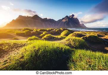 Beautiful view of the green hills glowing by sunlight. Location famous place Stokksnes cape, Vestrahorn (Batman Mountain), Iceland, Europe
