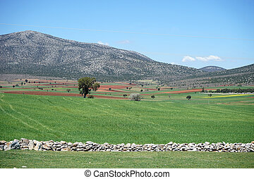 beautiful view of the mountains of Turkey