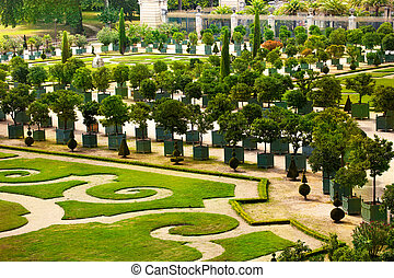 Palace of Versailles garden with trees in planters