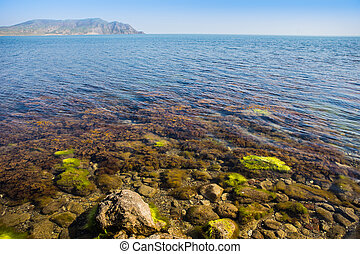 Beautiful view of the seashore with stones under water