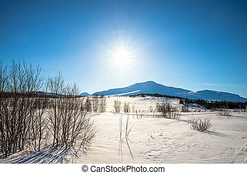 mountains on a sunny winter day