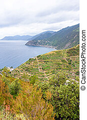 Beautiful view to Manarola mountains and a part of sea