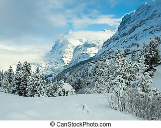 Beautiful views of the winter mountain peaks - the best place for a holiday. Grindelwald, Swiss Alps