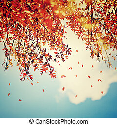 Beautiful vintage autumn background