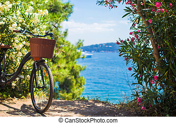 Beautiful vintage bicycle with basket on background of...