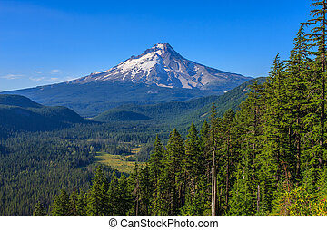 Majestic View of Mt. Hood on a bright, sunny day during the summer months.