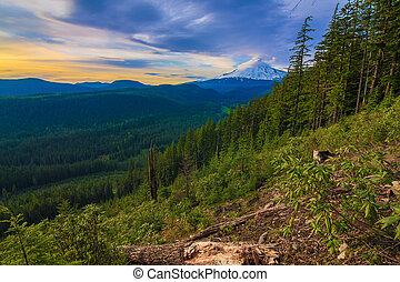 Beautiful Vista of Mount Hood in Oregon, USA. - Majestic ...