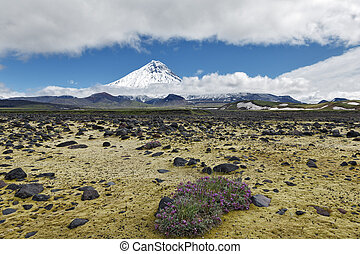 Beautiful volcanic landscape - view on Kamen Volcano and tundra. Russia, Far East, Kamchatka Peninsula