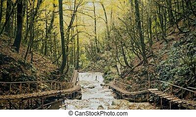 Beautiful water cascade in the wood