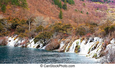 Beautiful waterfall and azure lake with crystal clear water among fall woods in Jiuzhaigou nature reserve (Jiuzhai Valley National Park) of Sichuan province, China. Amazing autumn forest landscape.