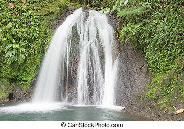 Beautiful waterfall in a rainforest. Cascades aux Ecrevisses, Guadeloupe, Caribbean Islands