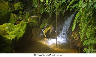 """Beautiful Waterfall in a Tropical Wilderness, with Sound"""