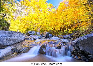 Beautiful waterfall in autumn season
