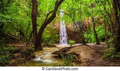 Beautiful Waterfall In Bright Green Forest