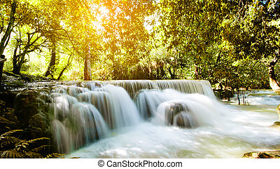 Beautiful waterfall in forest, Tat Kuang Si Waterfalls, Luang prabang Laos.