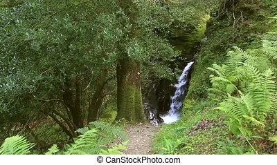 Beautiful waterfall in Glendalough