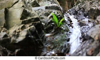 Beautiful waterfall in jungle forest. Video shift motion...