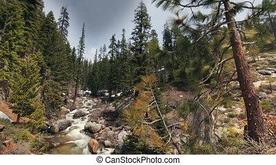 beautiful waterfall in sequoia national park, california, usa