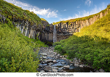 beautiful waterfall Svartifoss in Skaftafell national park, Iceland