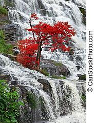 Beautiful waterfalls in northern Thailand.