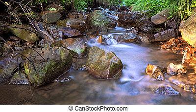 Beautiful waterscape ,virgin mountain river