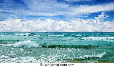 beautiful waves in the sea