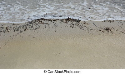 Beautiful waves on the beach (1920x1080/30p, tripod)