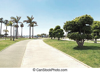 Beautiful well-kept park with trees, palms, blue sky on summer sunny day