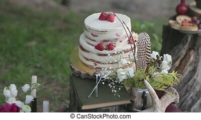 Beautiful white cake standing on a stump in the forest