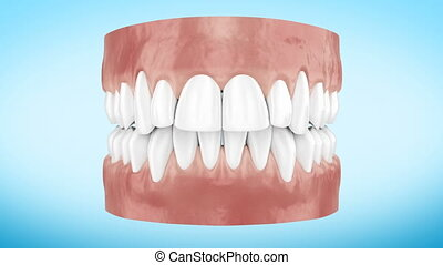 Beautiful White Clean Teeth Zoom Close Up 3d Animation....