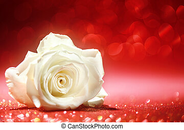 Beautiful white rose on sparkling red background