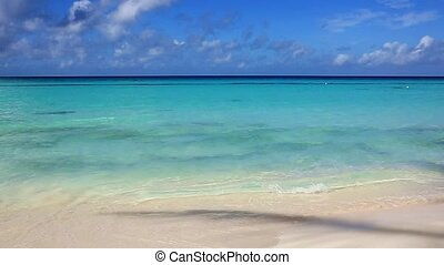 Beautiful white sand beach and Caribbean sea.
