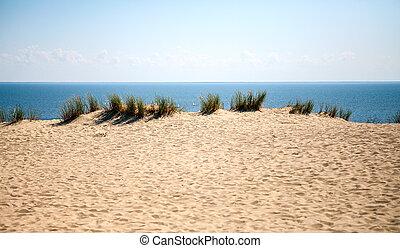Beautiful white sand dunes at the sea beach