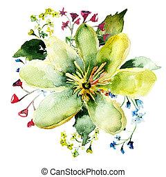 Beautiful wild flower, watercolor illustration