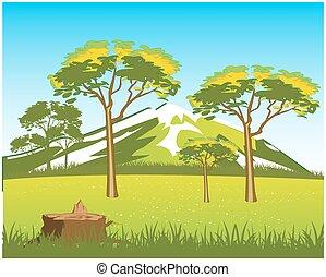 Beautiful wild landscape