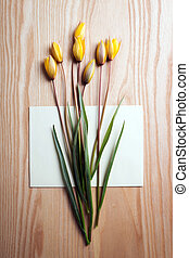 beautiful wild yellow tulips on wooden background