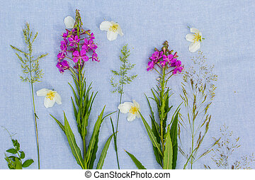 Beautiful wildflowers, artistic background