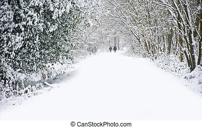 Beautiful winter forest snow scene with deep virgin snow and family walking dogs on path walkway