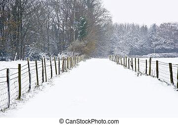 Beautiful winter forest snow scene with deep virgin snow