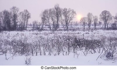 Beautiful winter landscape at sunset.