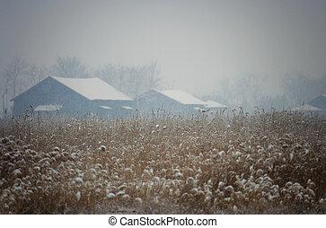 Beautiful winter landscape ecology park in south korea,SORE