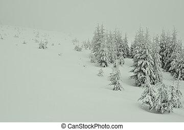 Beautiful winter landscape in snowy mountains.