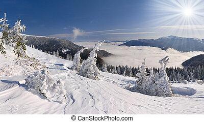 Beautiful winter landscape in the Carpathian mountains