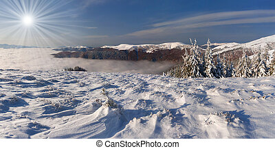 Beautiful winter landscape in the Carpathian mountains