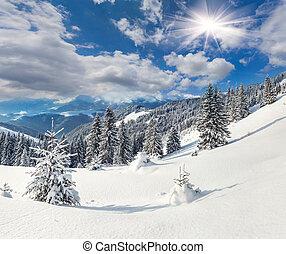 Beautiful winter landscape in the Carpathian mountains....