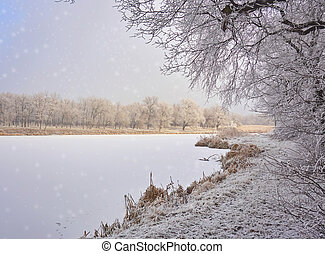 Winter landscape in the city park.