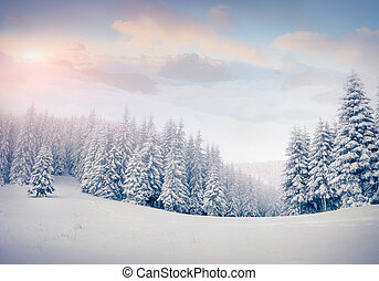 Beautiful winter landscape in the foggy mountains. Retro style.