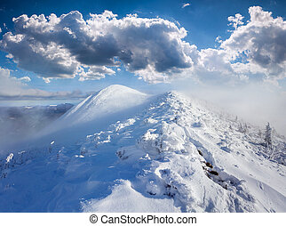 Beautiful winter landscape in the foggy mountains