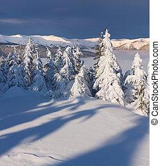 Beautiful winter landscape in the mountain