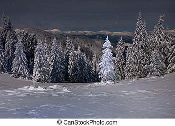 Beautiful winter landscape in the mountains at night